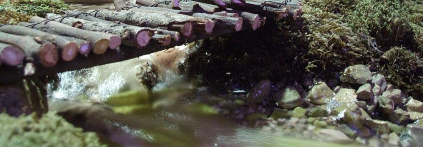 Scene del presepe : il fiume